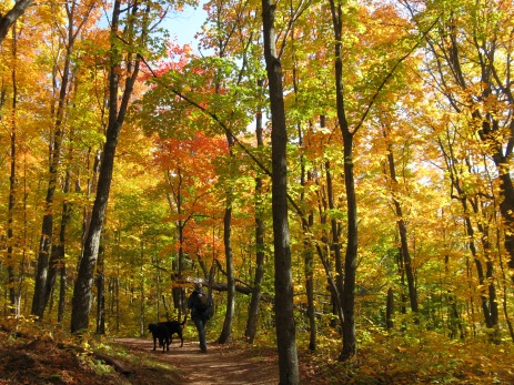 Enjoying Fall's colors (photo credit: Kat B./travelgardeneat.com)