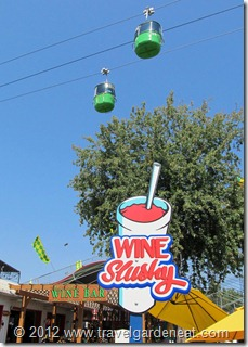 Wine Slushy at the MN State Fair