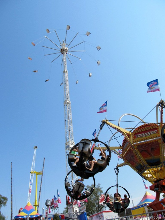 Roses In Garden: One In 164,694 (People): A Day At The Minnesota State Fair