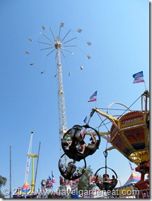 MN State Fair Midway