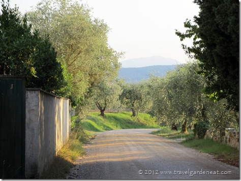 The peaceful, relaxing view close to the Villa del Cielo with Caminetto