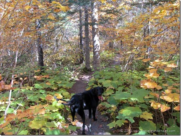 grand portage trail 2 9_29_12
