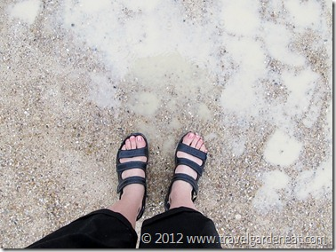 Wet day at Versailles