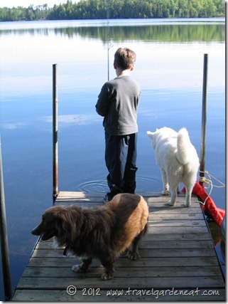 Fishing off the dock with the dogs