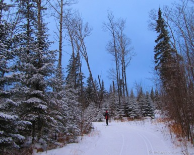 Nordic skiing in Northern Minnesota (January)