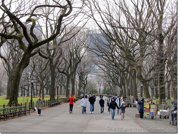 Running down Central Park's elm-lined Mall ~ New York City