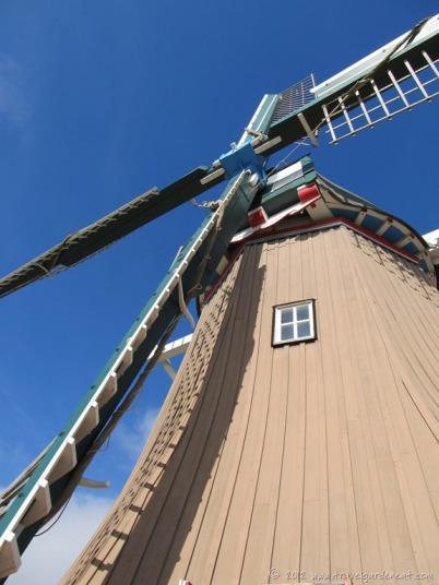 The windmill's sails