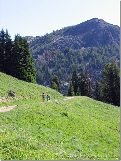 Starting the trail up Mt. Washburn in Yellowstone National Park