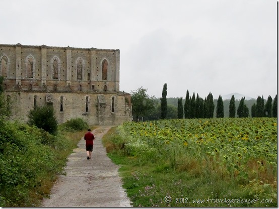 The path from the chapel to the Abbey of San Galgano
