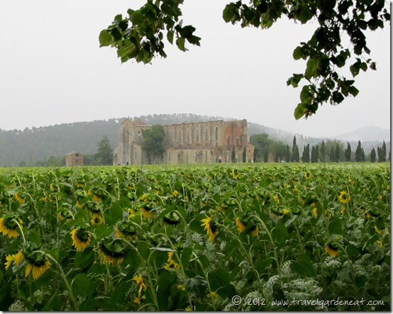 The Abbey of San Galgano ~ Tuscany, Italy