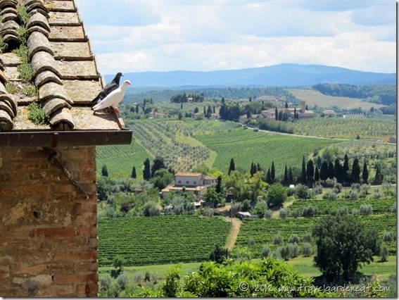 View from the Tuscan hill town of San Gimignano