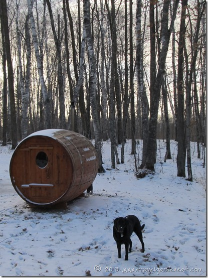 Return to the sauna in winter