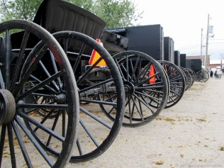Row of Amish buggies in Mt. Hope