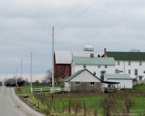 Amish farmer heading home