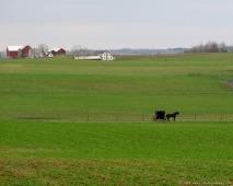 Classic scene in Holmes County, Ohio