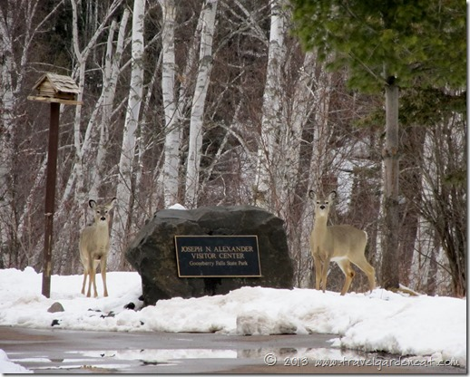 Gooseberry Falls State Park Visitor Center