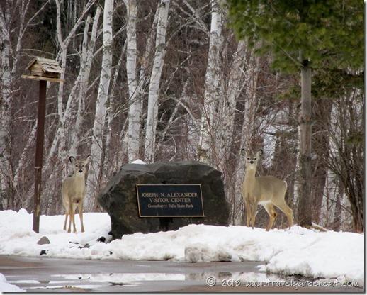 Gooseberry Falls State Park Visitor Center