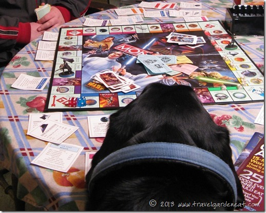 Monopoly:  the black lab version