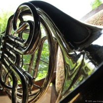 french-horn-3.jpg