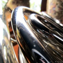 french-horn-5.jpg