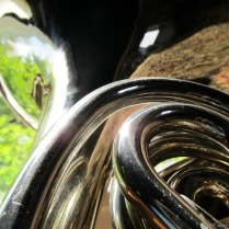french-horn-6.jpg