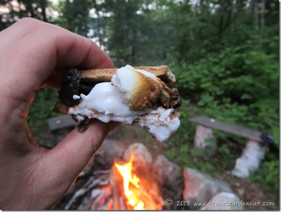 S'mores and a Campfire
