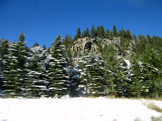 yellowstone2busride11_23_13.jpg