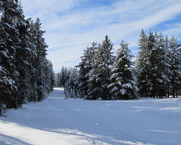 Start of Deja View trail, Rendezvous Trails