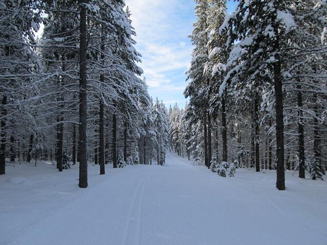 Deja View trail, Rendezvous Trails