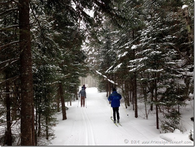 Cross-country skiing with good friends