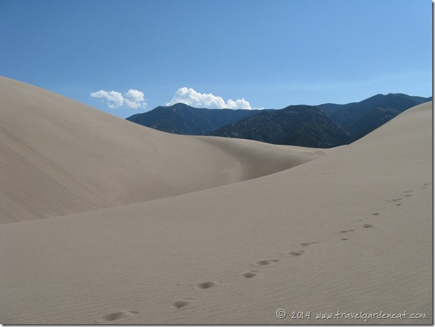 Sand dunes with the backdrop of Sangre de Cristo Mountains