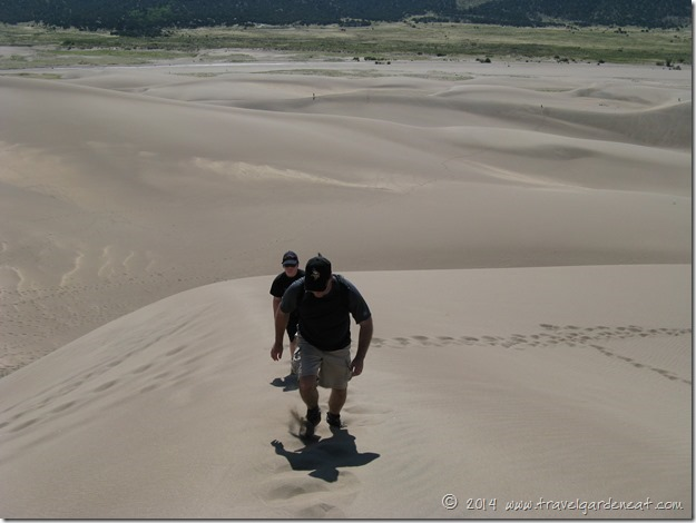 Climbing the dunes in Colorado