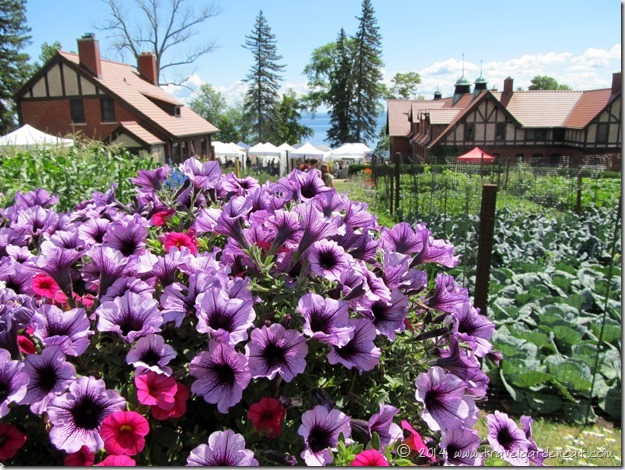Art Fair at Glensheen Mansion ~ Duluth, MN
