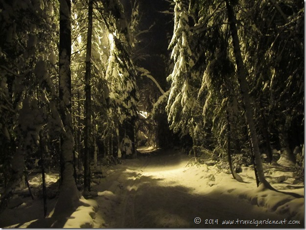 Lester Park Ski Trails ~ Duluth, MN