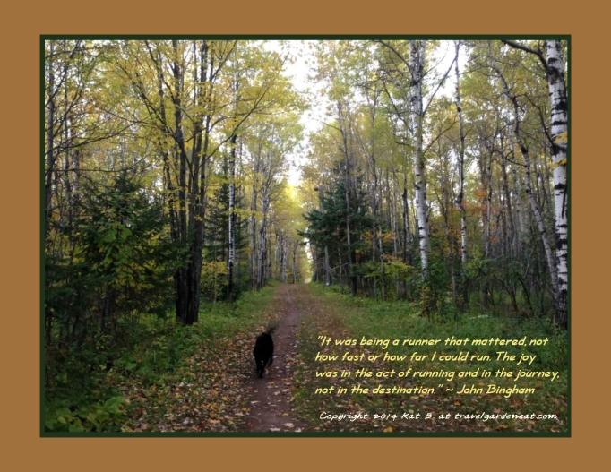 Joy of an Autumn Run