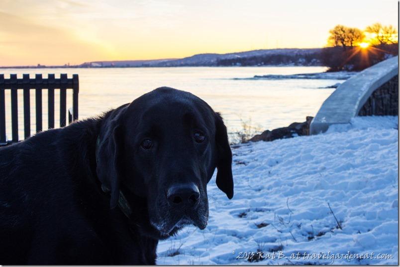 Best Friend near the Big Lake
