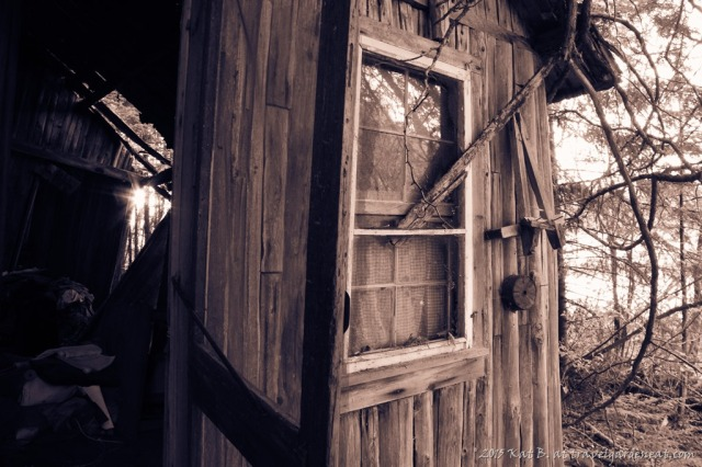 Broken Cabin