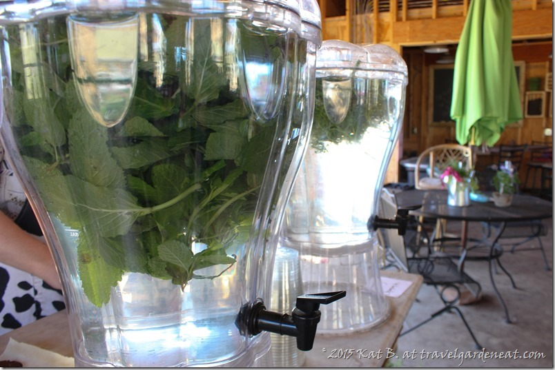 Herb-infused waters at Byrns Greenhouse of Zim
