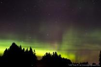 Northern Lights of Minnesota