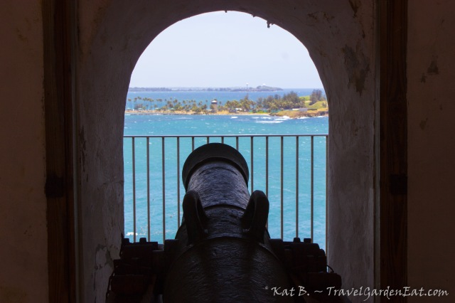 Puerto Rico cannon frame TGE 20140619 1