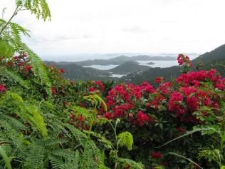 Coral Bay Overlook ~ St. John, USVI