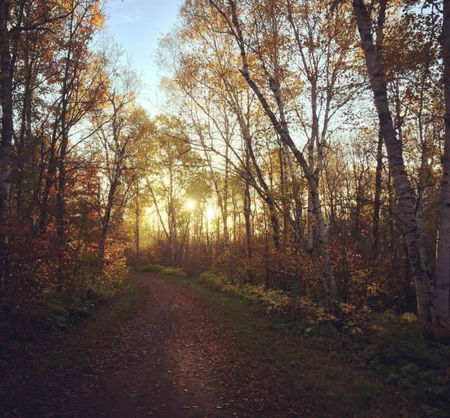 Fall trail running in Duluth