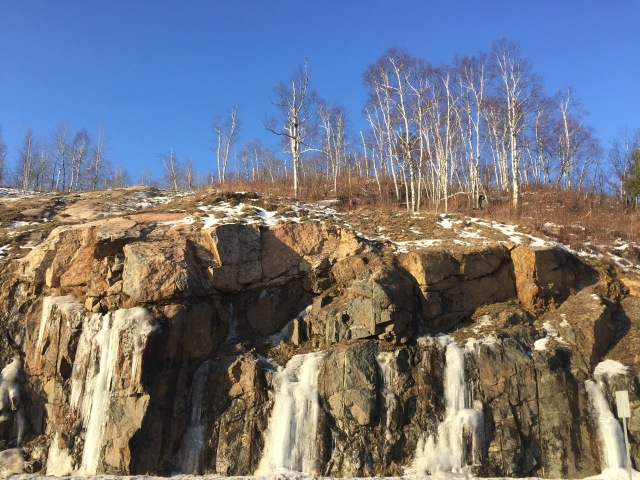Birch Trees on a Rocky Crag in Duluth