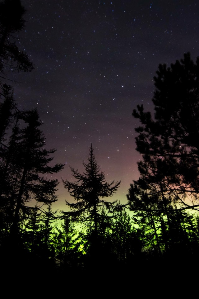 Northern lights in the Northern Minnesota sky