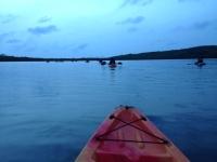"""Fajardo's Bio Bay """"Laguna Grande:"""