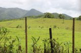 Puerto Rican countryside