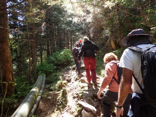 Hiking to Baranof Warm Springs